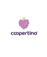 "Unlimited hosting from ""Coopertino"""